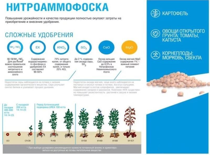 Диаммофоска – комплексное питание и защита растений