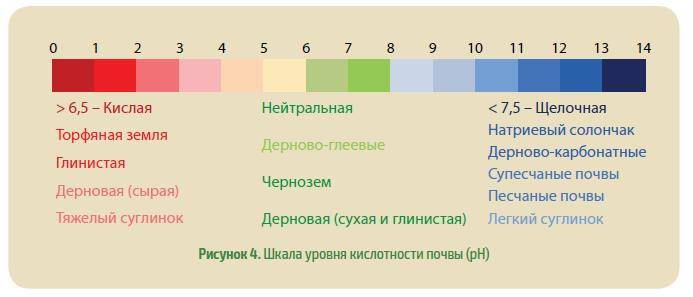 Кислотность почвы: оптимальные и избыточные показатели рн