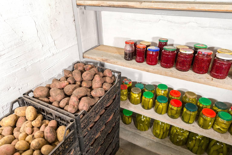 Как хранить овощи на балконе зимой в картонной коробке. советы: как хранить овощи на балконе зимой | дачная жизнь