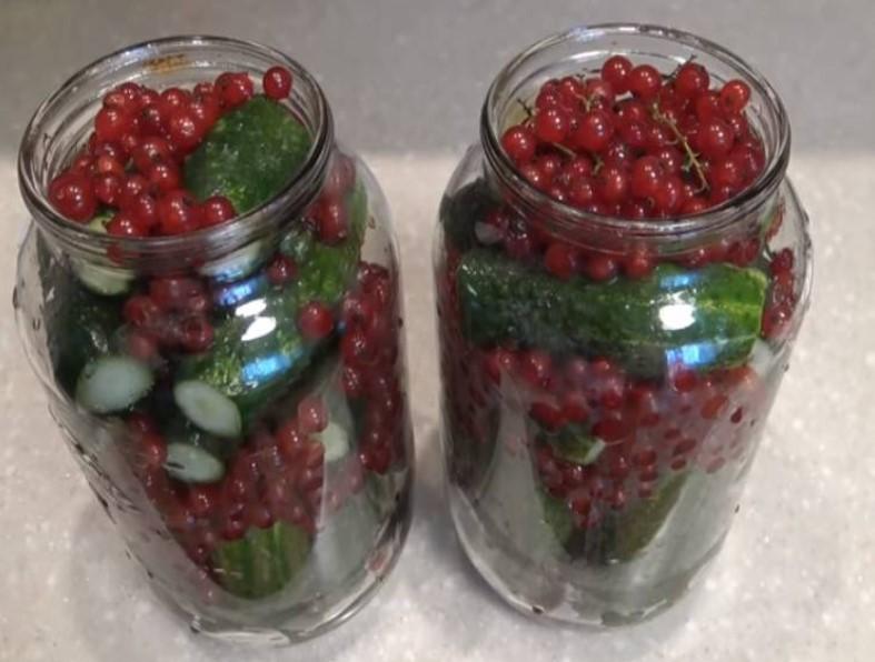 Консервирование огурцов с красной смородиной: рецепты на зиму, без стерелизации, отзывы ковальчук, с желе, соком, сахаром