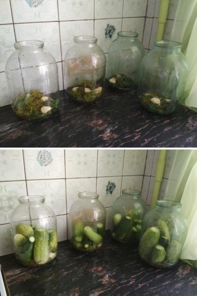 Огурцы на зиму: рецепты с лимонной кислотой, советы по консервации и хранению заготовок