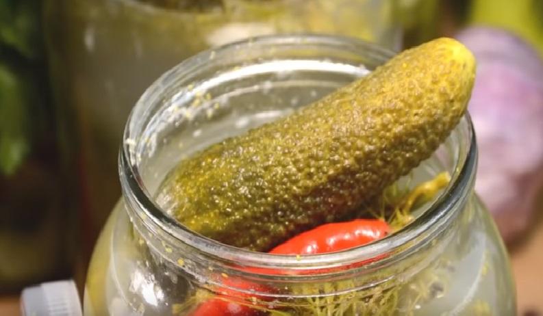 Огурцы соленые на зиму, хрустящие: в банках для хранения в квартире, 10 лучших рецептов