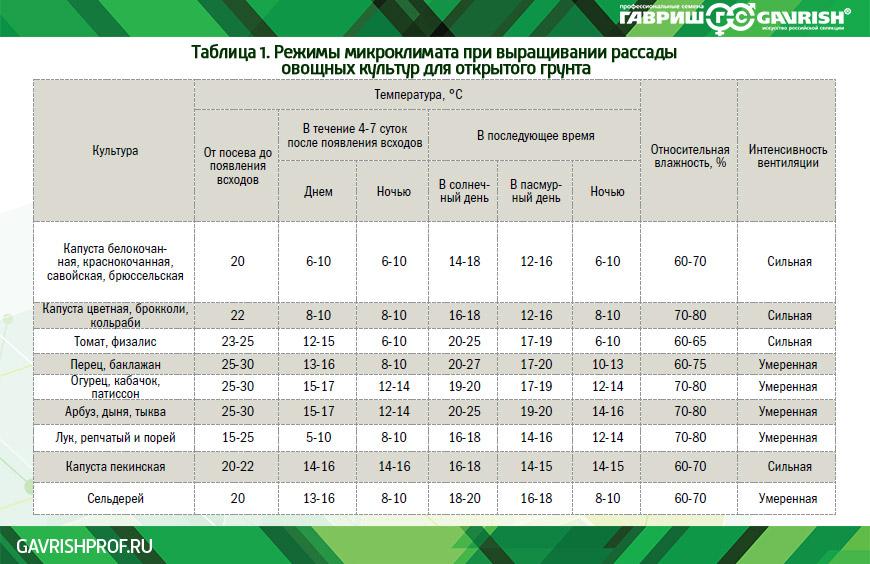 Выращивание рассады: сроки, досвечивание, оптимальная температура - дачные советы.ру