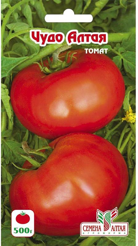 Томат алтайский розовый: характеристика и описание сорта, как вырастить с фото