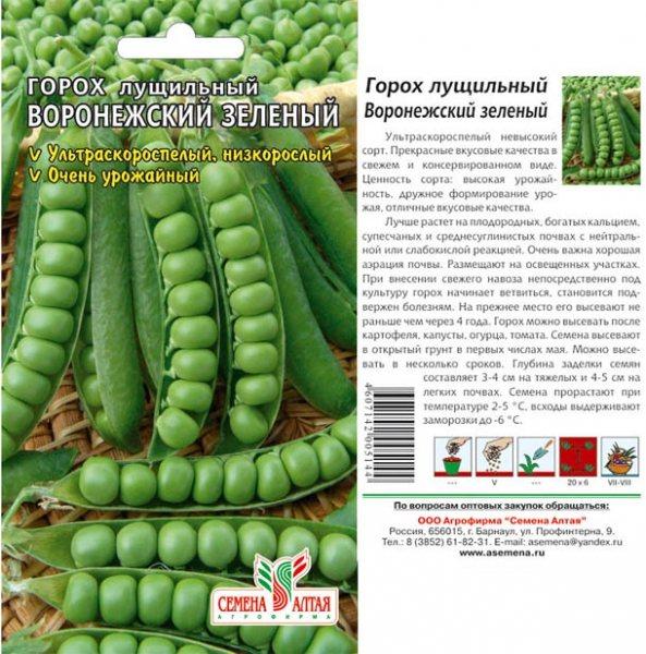 Сорта и виды фасоли. фото и описание