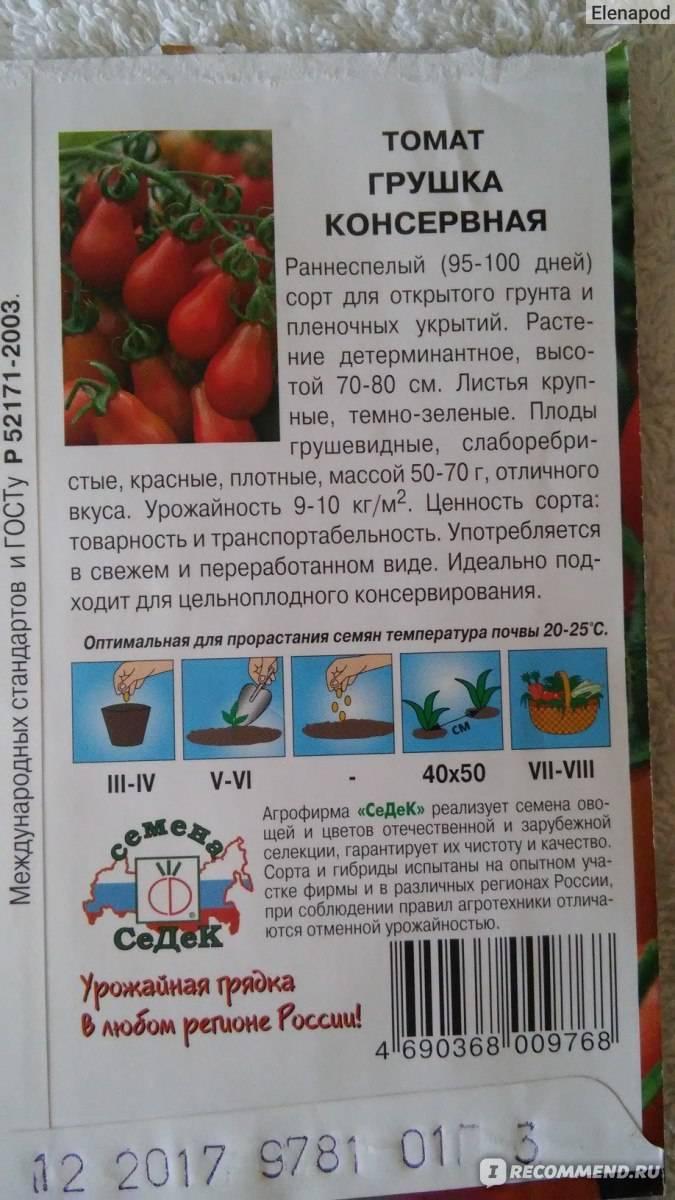 Томат первоклашка — описание и характеристика сорта | zdavnews.ru