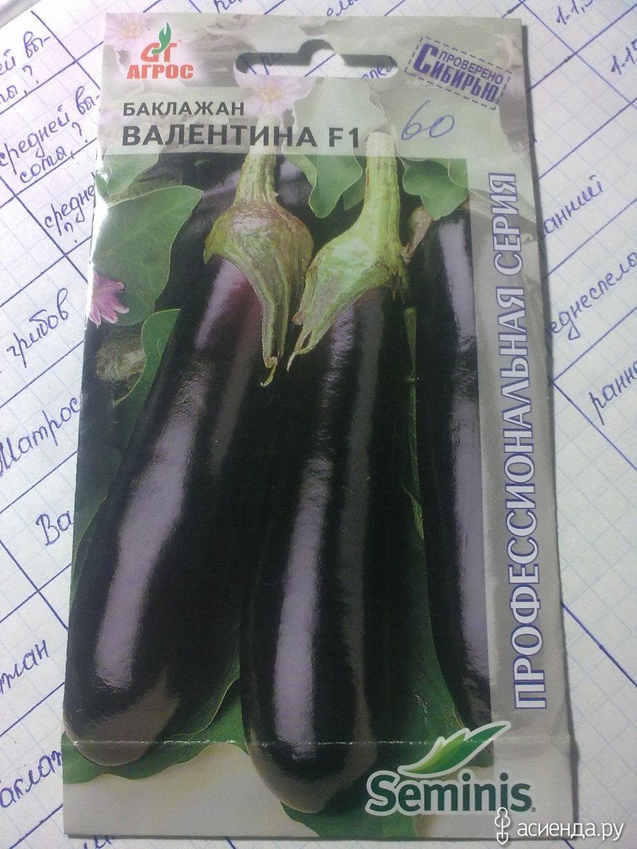 Баклажан вера: описание сорта, особенности выращивания и ухода, посадки, фото, отзывы