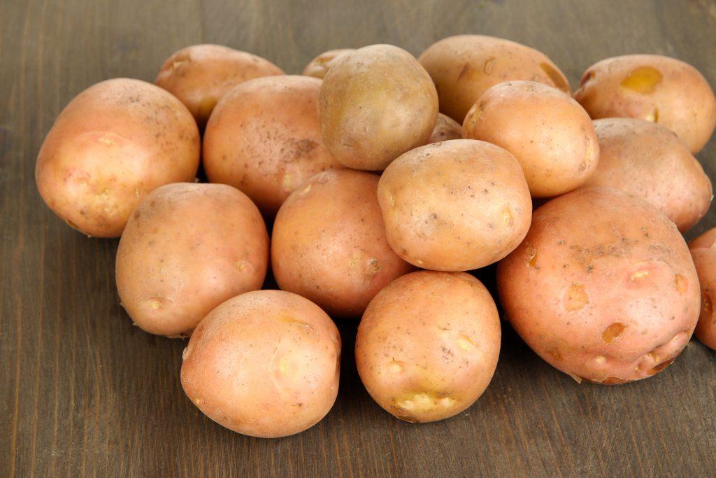 Ранний картофель жуковский: отзывы и фото, описание и урожайность сорта