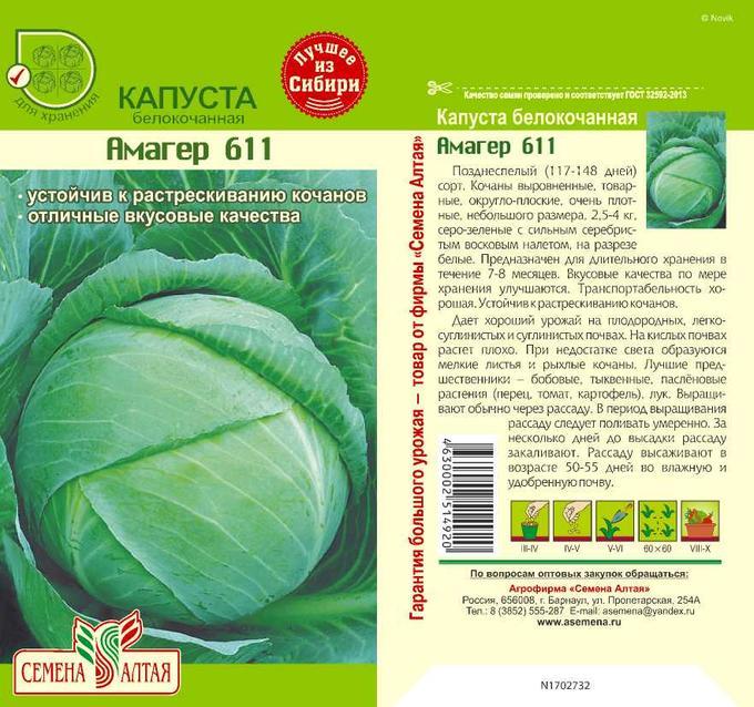 Описание белокочанной капусты Харьковская зимняя, выращивание и уход