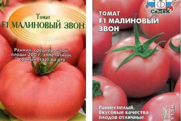Томат «малиновый слон»: описание сорта, фото, особенности выращивания и основные характеристики помидоры русский фермер