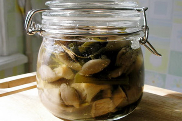 Рецепты быстрого приготовления маринованных вешенок в домашних условиях