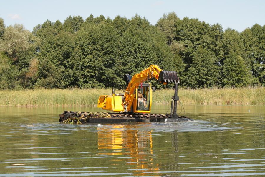 Очистка пруда: почему необходима очистка