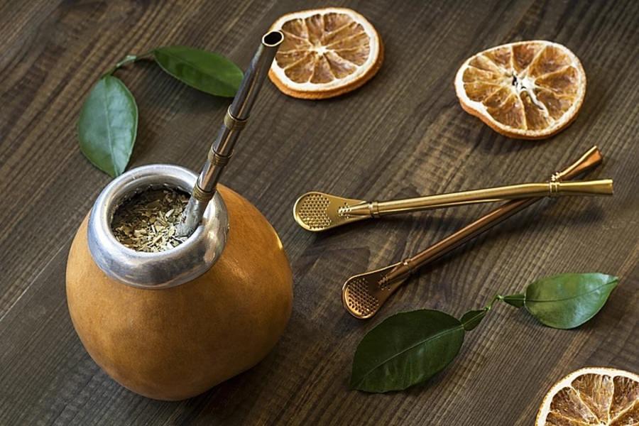 Падуб парагвайский для чая мате, фото и лечебные свойства