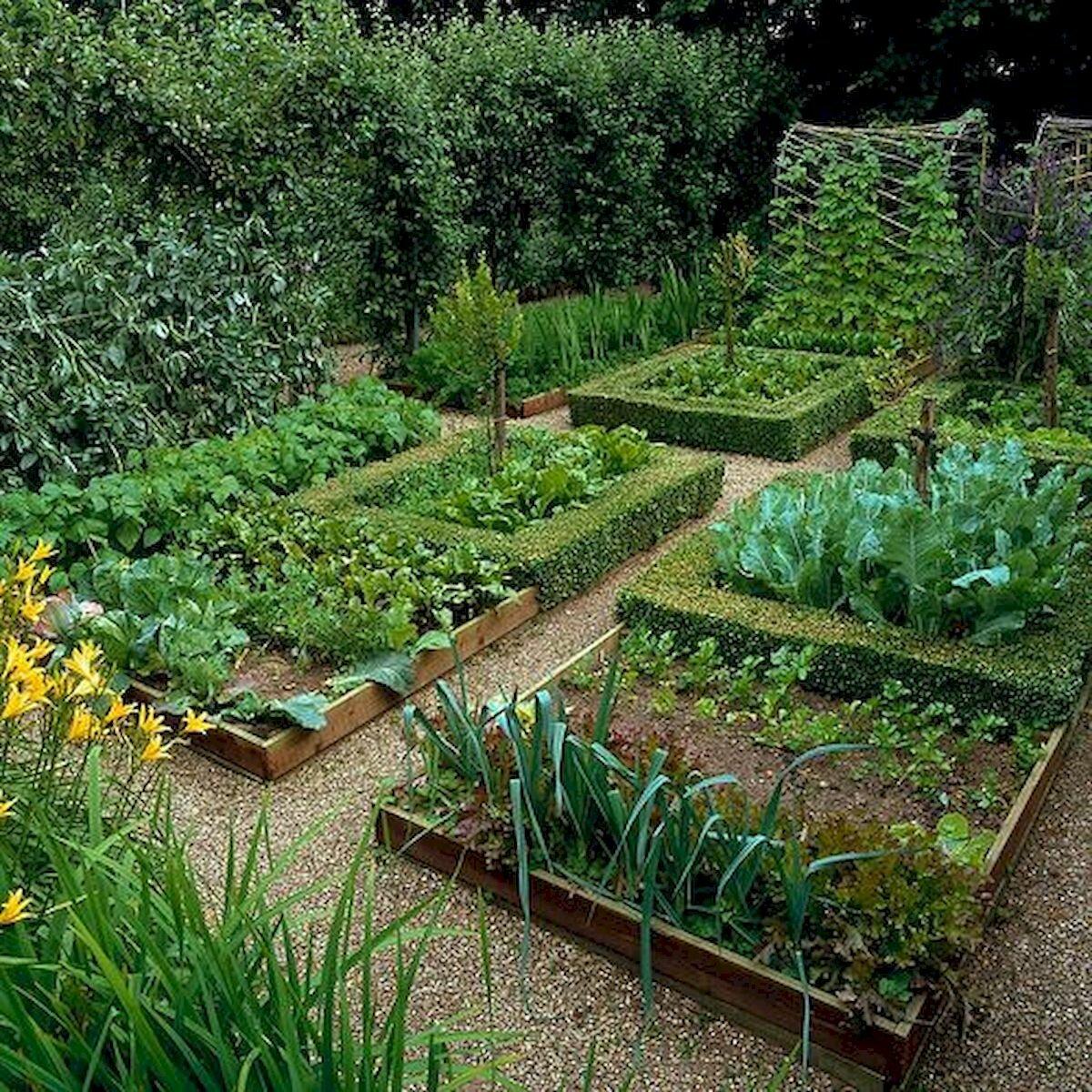 Контейнерные сады и огороды на маленькой даче: идеи, обзор статей на сайте 7 дач