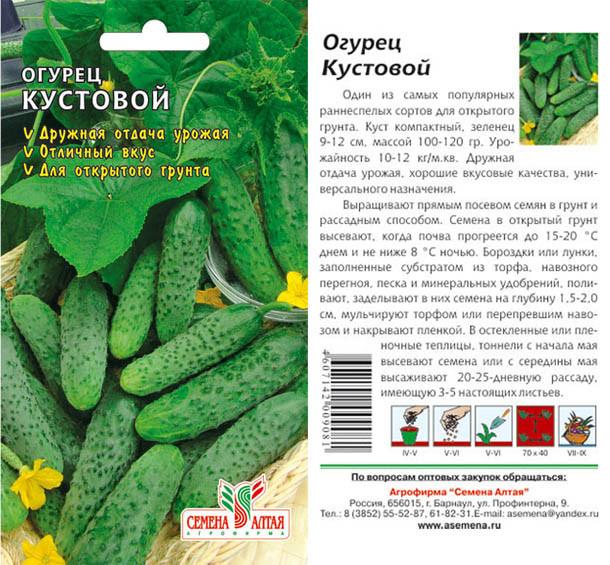 ✅ все о сорте огурца вязниковский: описание, агротехника выращивания и уход - tehnomir32.ru