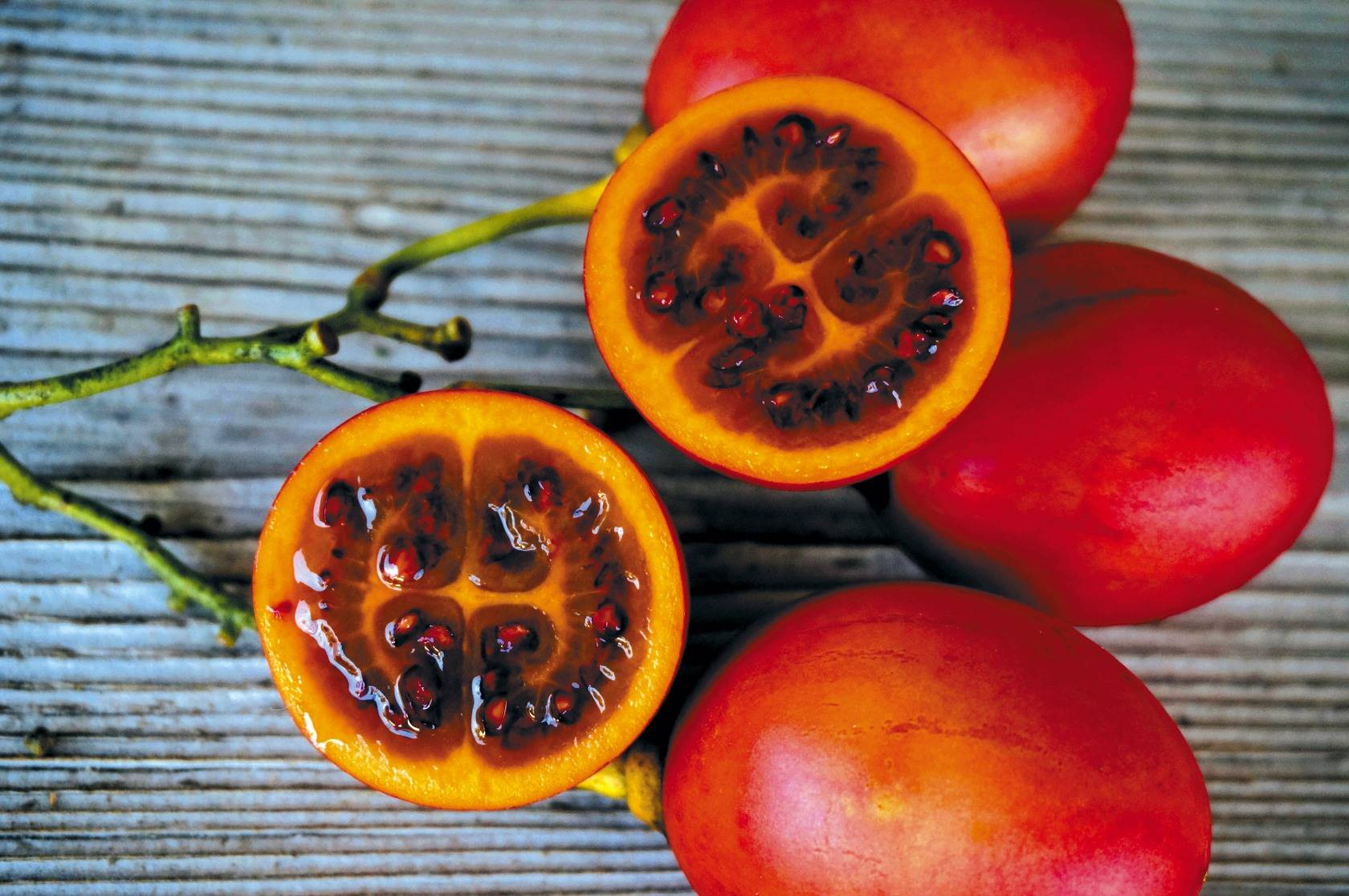 Тамарилло фрукт - фото и описание, как кушать плоды томатного