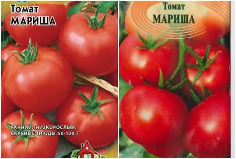 Агротехника выращивания рассады томатов в 2020 году и сроки  