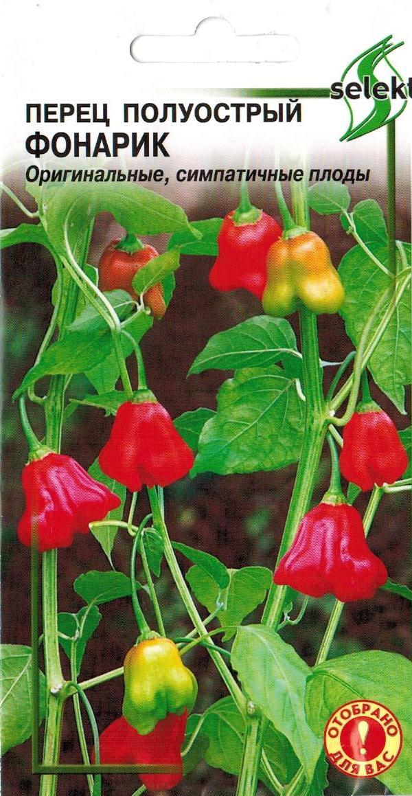Горький перец - колокольчик: фото, отзывы, как выращивать