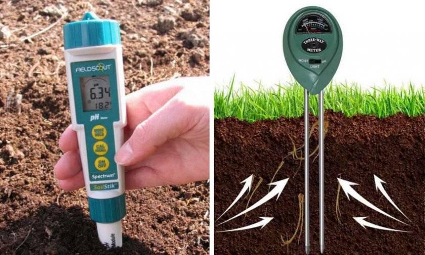 Определение кислотности почвы на даче самостоятельно