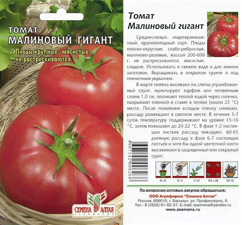 Ранний томат | tomatland.ru