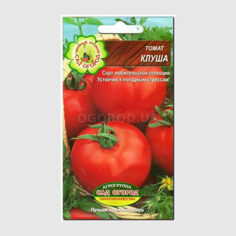 Томат клуша: характеристика и описание сорта, отзывы об урожайности