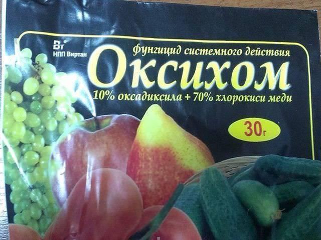 Оксихом: инструкция по применению для помидоров, отзывы, когда и как обрабатывать