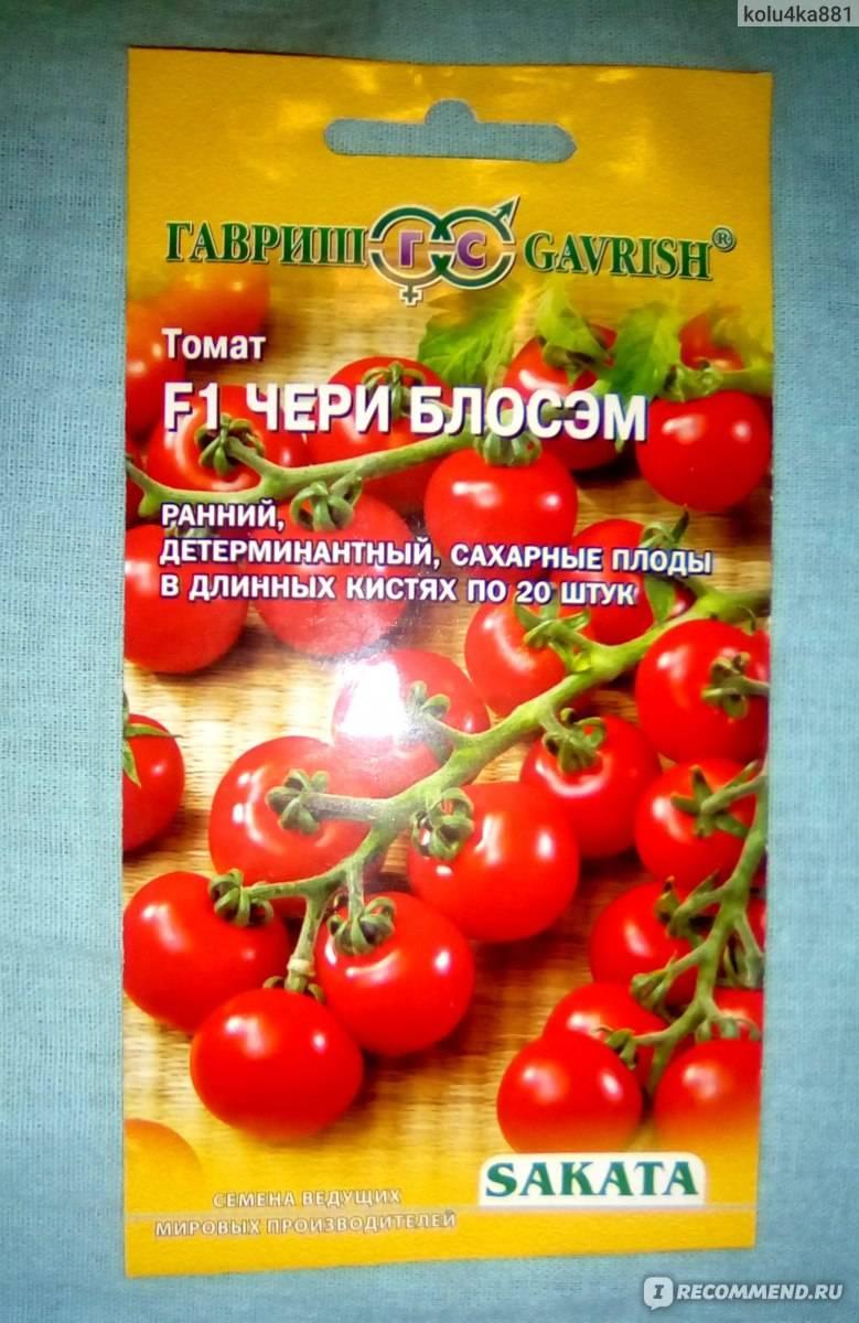Негибридные сорта томатов