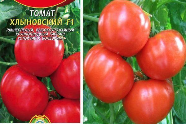 Характеристика и описание томата «кемеровец»