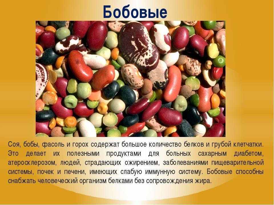 Фасоль: калорийность и польза для здоровья | food and health