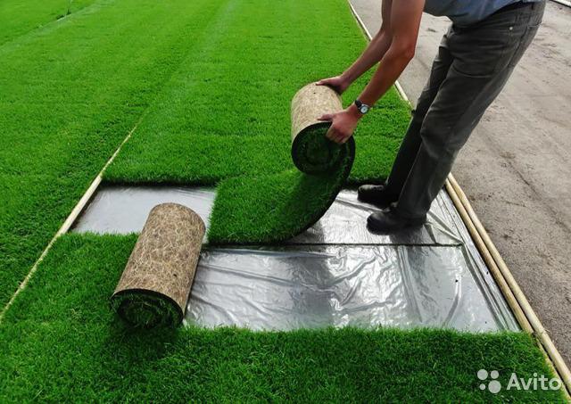 Вечнозеленое покрытие: искусственный газон, его преимущества и особенности укладки