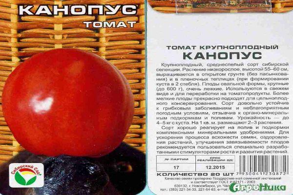 Томат шоколадный зайчик: отзывы об урожайности, характеристика и описание сорта, фото помидоров