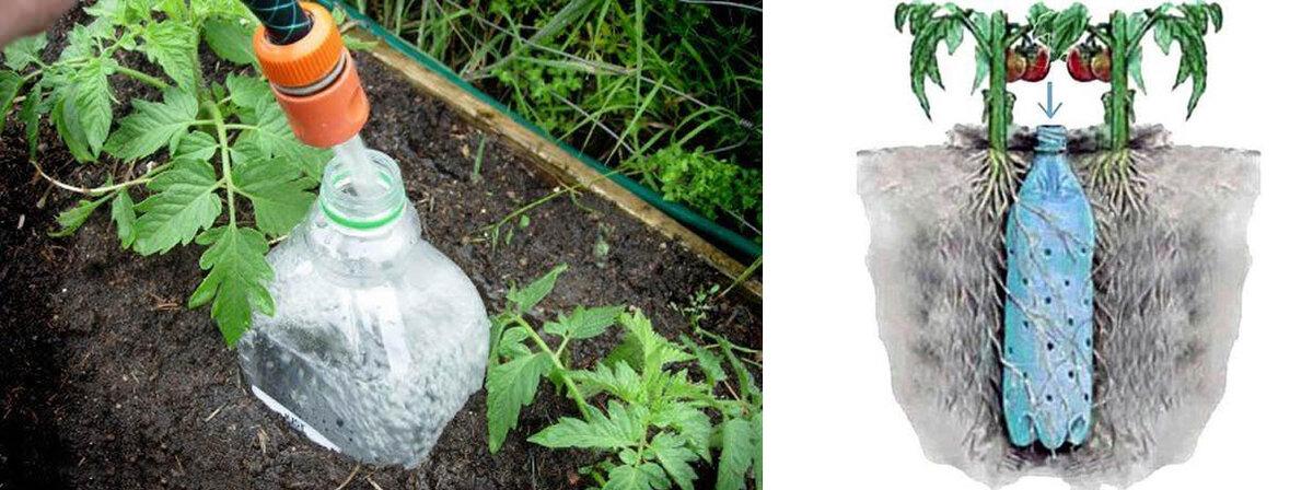 Капельный полив своими руками из пластиковых бутылок - для огурцов и помидоров в теплице - мк с фото и видео