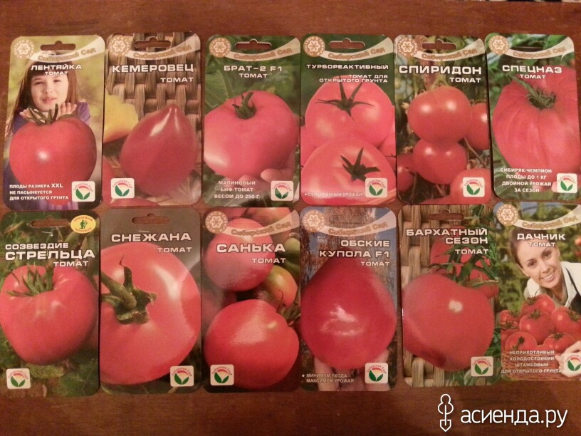 Описание сорта томата обские купола и его характеристики - всё про сады