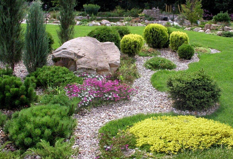 Растения для альпийской горки: названия, описание, фото
