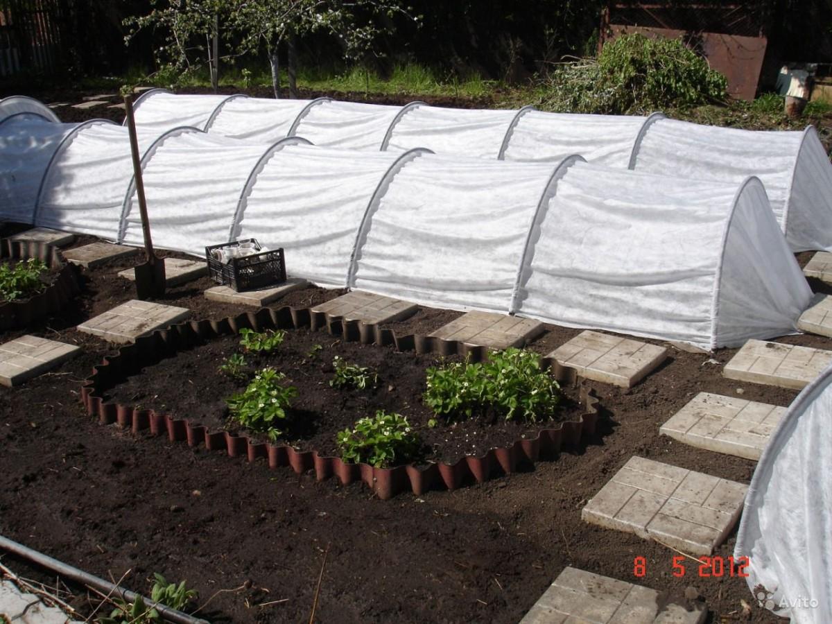 Чем можно закрыть дно теплицы чтобы не росли сорняки + фото