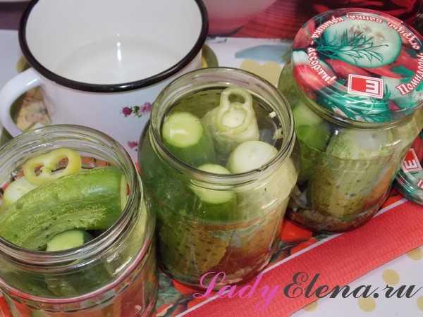 Огурцы на зиму без уксуса - рецепты соленых, малосольных, кислых и квашенных консервированных огурцов