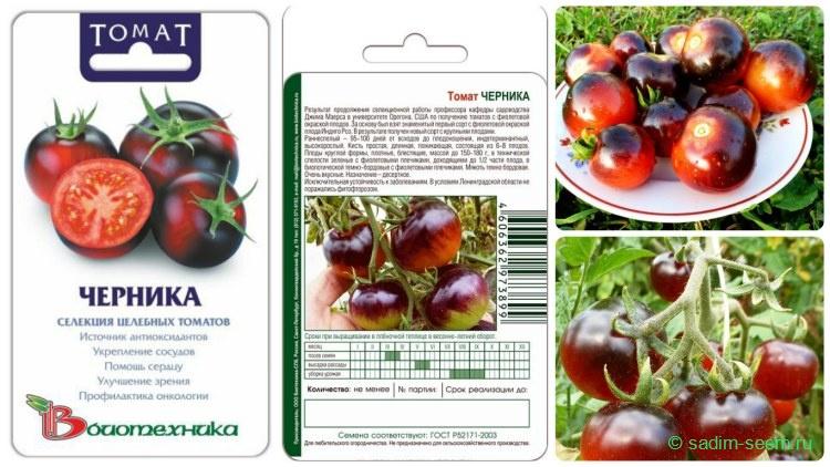 Лучшие сорта томатов черри   tomatland.ru