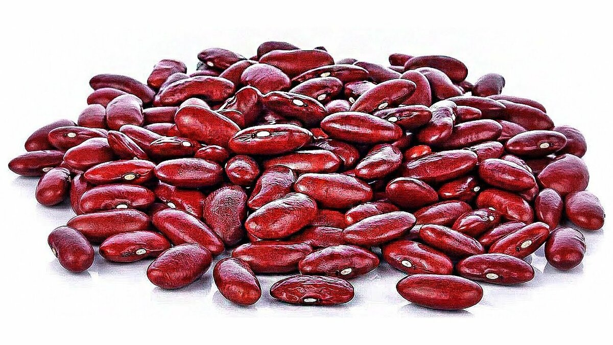 Красная фасоль: польза и вред, калорийность, как приготовить, отзывы