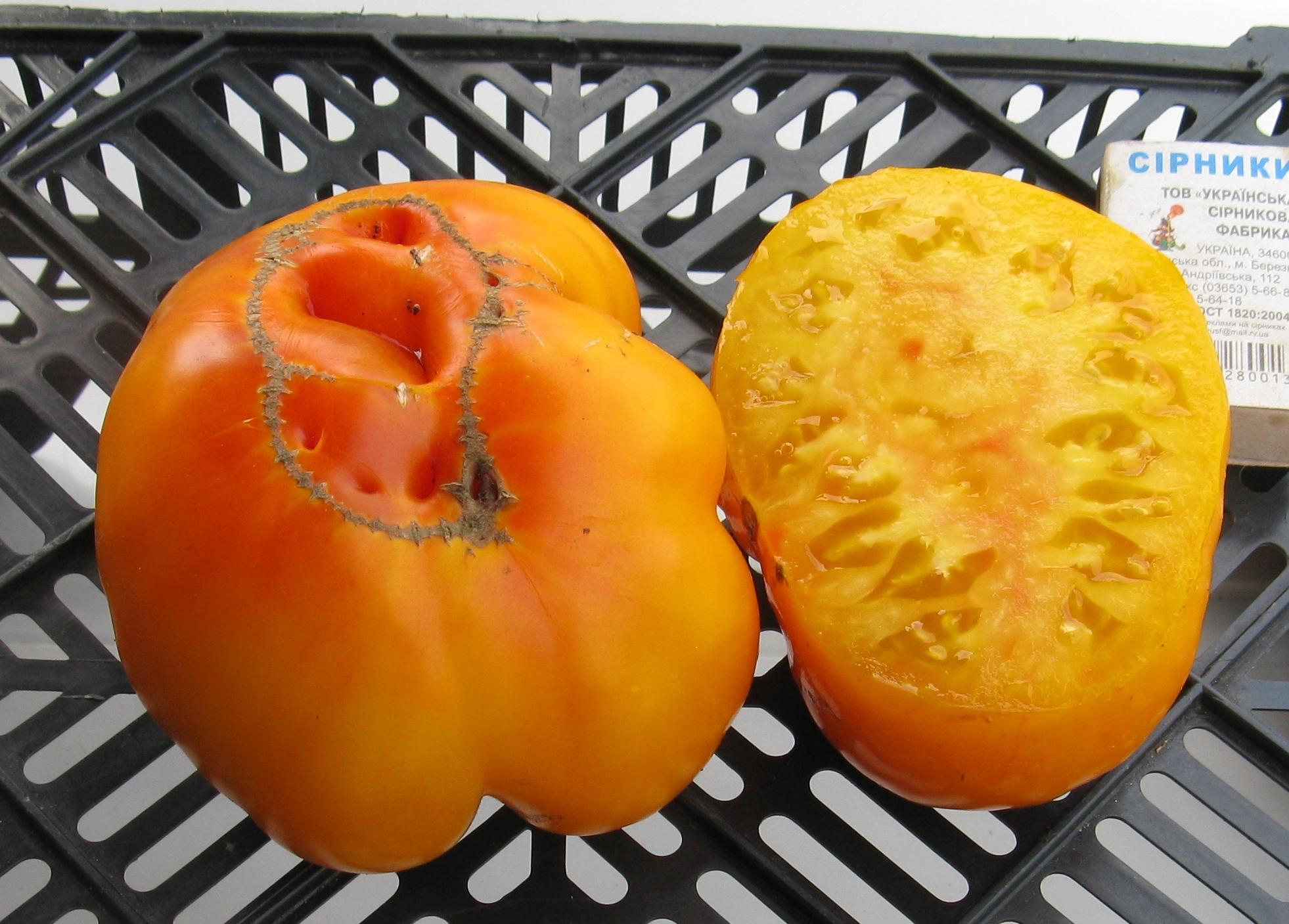 Сорта желтых томатов | tomatland.ru