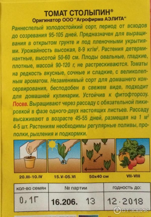Всходы томатов, в том числе на какой день прорастают помидоры, а также как проверить семена перед посадкой