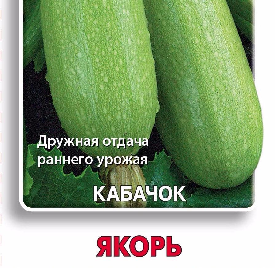 Огурец патти f1: описание и урожайность сорта, фото, отзывы