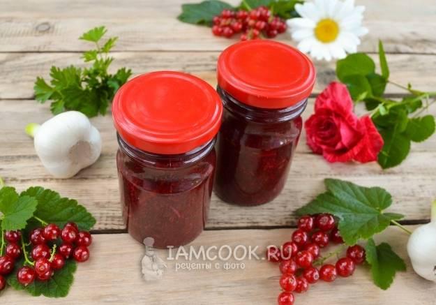 Соус из красной смородины - как вкусно готовить с орехами, лимоном или цитрусовыми