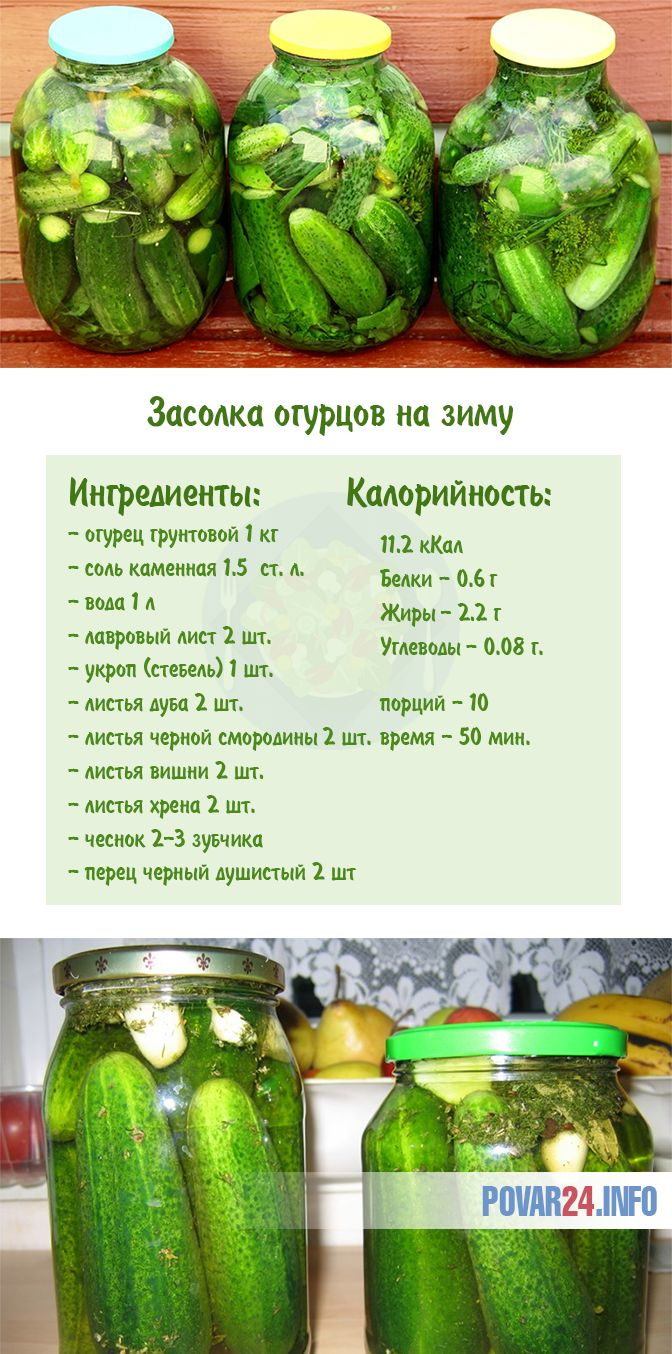 Засолить огурцы на зиму холодным способом рецепт с фото фоторецепт.ru