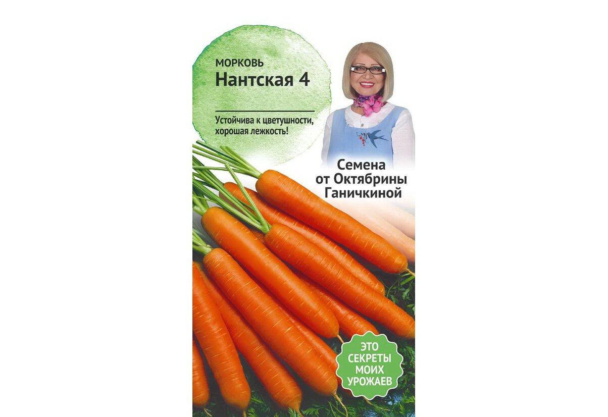 Морковь нандрин: описание и характеристика сорта, основные особенности, преимущества, недостатки, правила выращивания и урожайность русский фермер