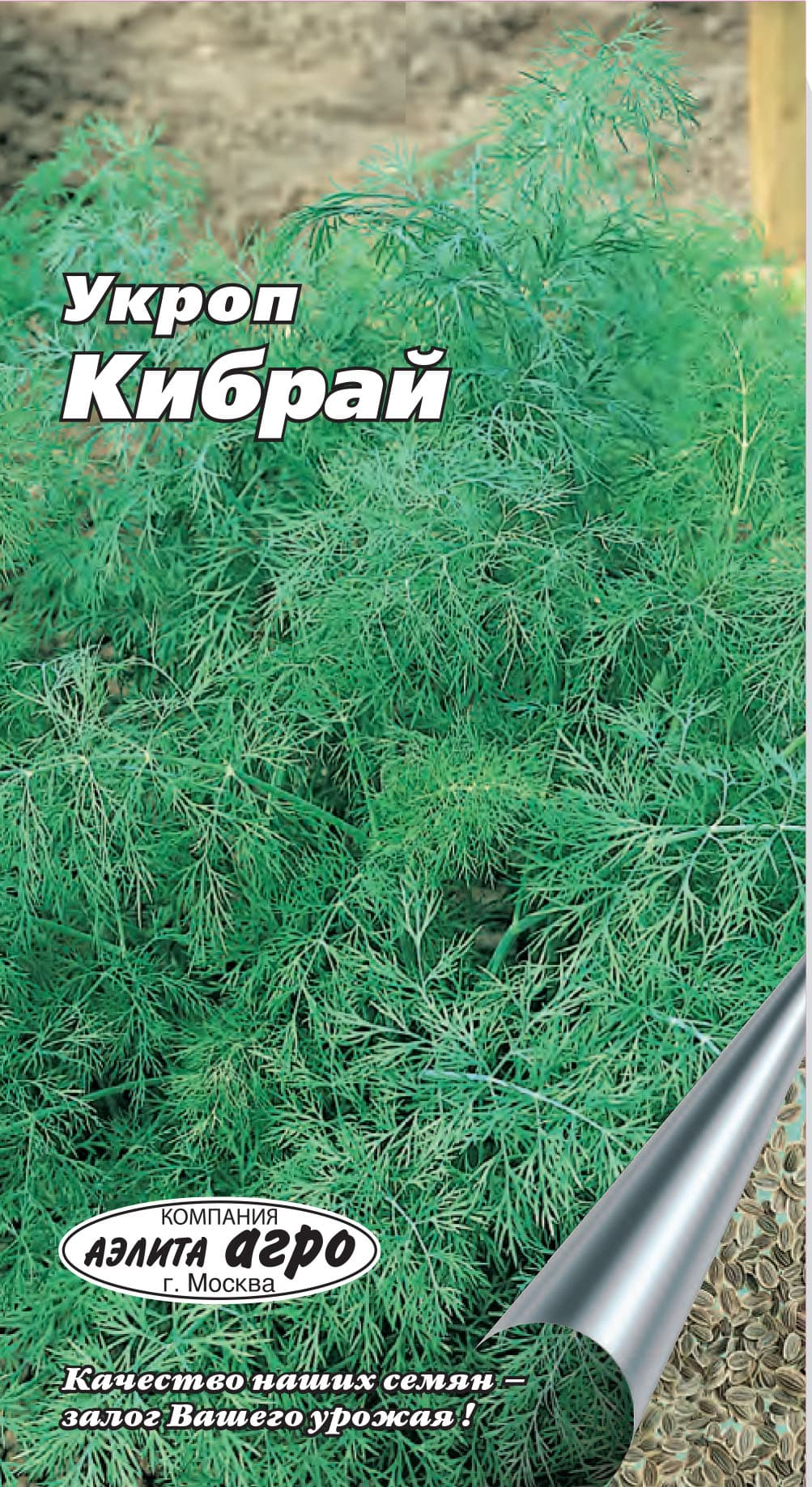 Укроп кибрай: характеристика и описание сорта с фото, отзывы, рассада кассета е6