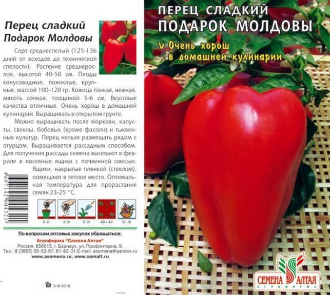 Описание сладкого перца Подарок Молдовы и выращивание рассадным способом
