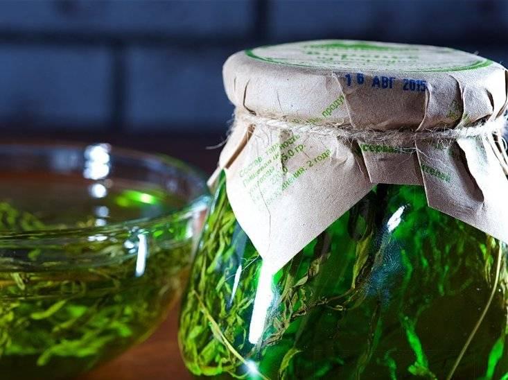 Заготовка тархуна на зиму в домашних условиях сухим, замороженным, в виде сиропа и варенья