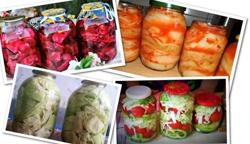 Кольраби на зиму очень вкусный рецепт. рецепты приготовления капусты кольраби на зиму со стерилизацией и без, заморозка и хранение