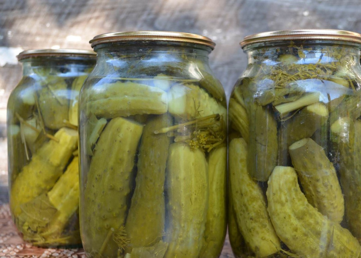 Консервация огурцов на зиму – 6 рецептов с фото. консервирование салатов с огурцами