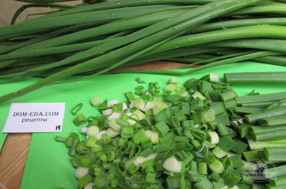 Можно ли замораживать репчатый лук на зиму? как заморозить зеленый лук, порей и шнитт в морозилке? русский фермер